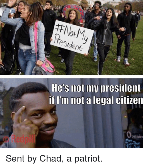 Memes, 🤖, and Chad: He's not my president  if I'm not a legal citizen  © Redpil  penin Sent by Chad, a patriot.