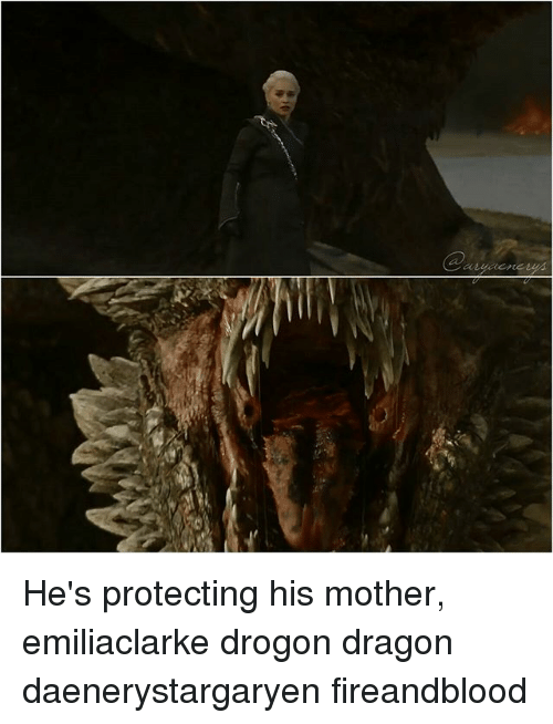He's Protecting His Mother Emiliaclarke Drogon Dragon