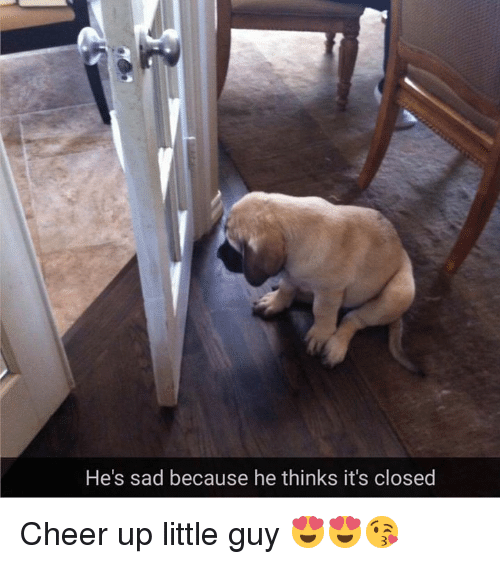 hes sad because he thinks its closed cheer up little 14908532 ✅ 25 best memes about cheer up cheer up memes,Cheer Up Meme