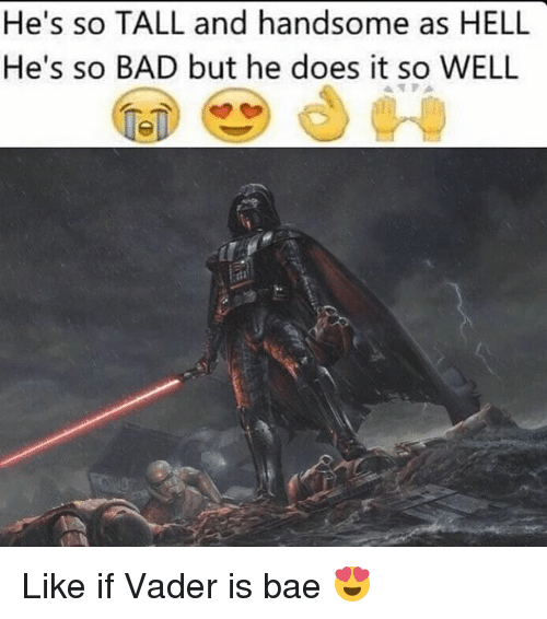 Bad, Bae, and Memes: He's so TALL and handsome as HELL  He's so BAD but he does it so WELL  TPA Like if Vader is bae 😍