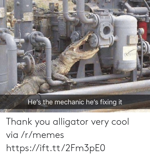 Memes, Thank You, and Alligator: He's the mechanic he's fixing it Thank you alligator very cool via /r/memes https://ift.tt/2Fm3pE0