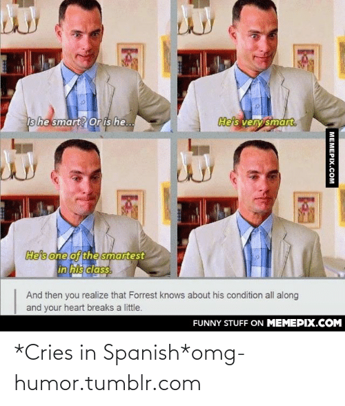 Funny, Omg, and Spanish: He's very smart.  Is he smart? Or is he..  He's one of the smartest  in his class.  And then you realize that Forrest knows about his condition all along  and your heart breaks a little.  FUNNY STUFF ON MEMEPIX.COM  MEMEPIX.COM *Cries in Spanish*omg-humor.tumblr.com