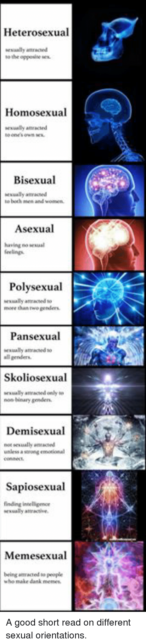 bisexual pansexual polysexual asexual and demisexual