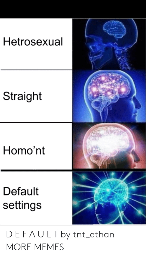 Dank, Memes, and Target: Hetrosexual  Straight  Homo'nt  Default  settings D E F A U L T by tnt_ethan MORE MEMES