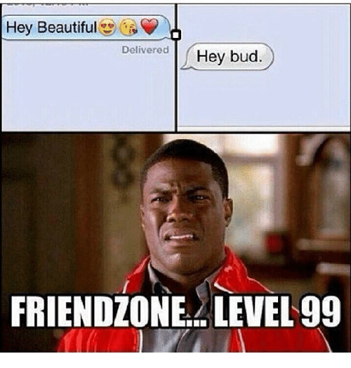 hey-beautiful-delivered-hey-bud-friendzone-level-99-13038537.png