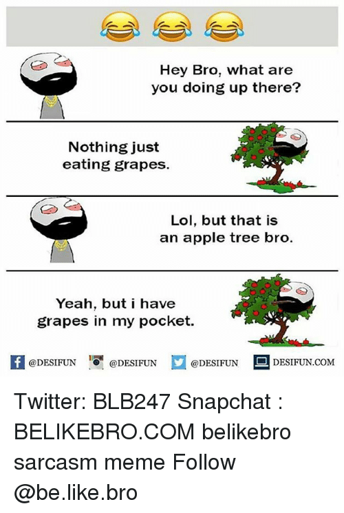 Apple, Be Like, and Lol: Hey Bro, what are  you doing up there?  Nothing just  eating grapes.  Lol, but that is  an apple tree bro.  Yeah, but i have  grapes in my pocket.  @DESIFUN  DESIFUN.COMM Twitter: BLB247 Snapchat : BELIKEBRO.COM belikebro sarcasm meme Follow @be.like.bro