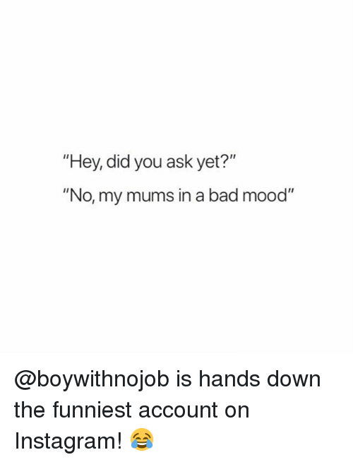 """Bad, Instagram, and Memes: """"Hey, did you ask yet?""""  """"No, my mums in a bad mood"""" @boywithnojob is hands down the funniest account on Instagram! 😂"""