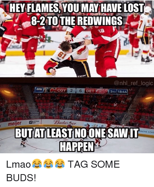 Lmao, Logic, and Memes: HEY FLAMES,YOU MAY HAVE LOST  8-2TOTHE REDWINGS  6  @nhl ref logic  SN  CGY  DET  3RD 18:44  BUTAT LEAST NO ONE SAWIT  HAPPEN  AYNE STAT Lmao😂😂😂 TAG SOME BUDS!