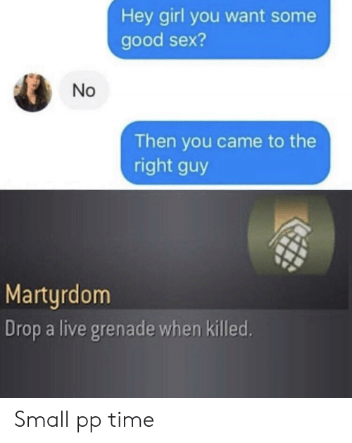 Sex, Girl, and Good: Hey girl you want some  good sex?  No  Then you came to the  right guy  Marturdom  Drop a live grenade when killed. Small pp time
