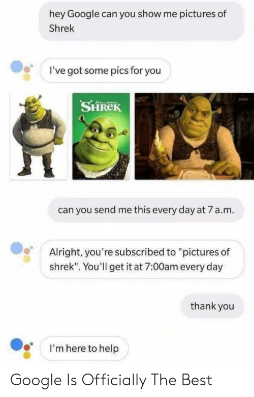 Hey Google Can You Show Me Pictures of Shrek I've Got Some