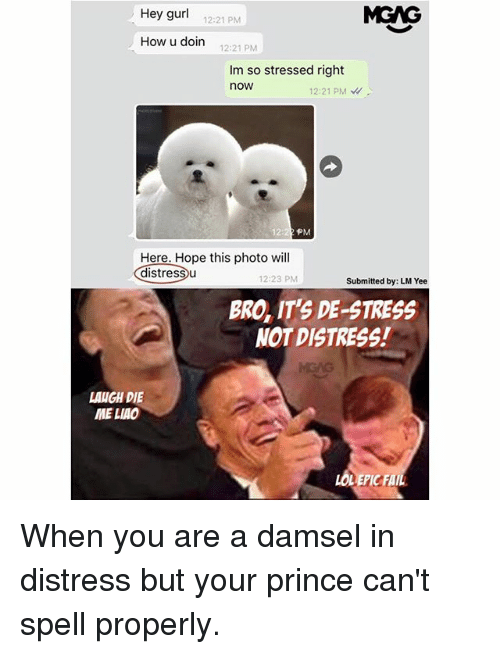 Fail, Memes, and Prince: Hey gurl  MGAG  12:21 PM  How u doin  12:21 PM  Im so stressed right  now  12:21 PM  12:  PM  Here. Hope this photo will  distressu  12:23 PM  Submitted by: LM Yee  BRO, IT'S DE-STRESS  NOT DISTRESS!  LANGH DIE  ME LIAO  LOLEPIC FAIL When you are a damsel in distress but your prince can't spell properly.