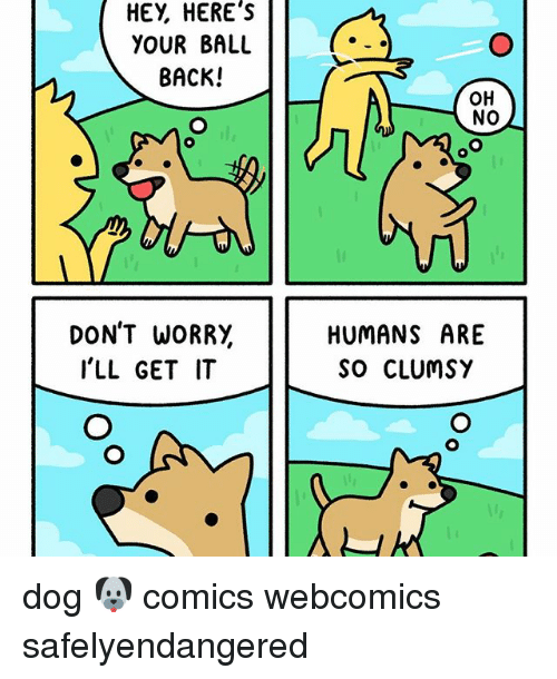 Memes, 🤖, and Dog: HEY HERE's  YOUR BALL  BACK!  DON'T WORRY  I'LL GET IT  OH  No  HUMANS ARE  SO CLUMSY dog 🐶 comics webcomics safelyendangered