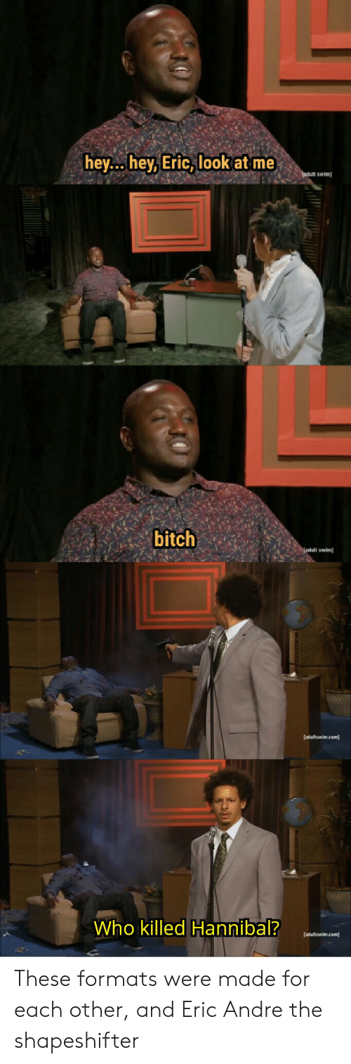 Hey Hey Eric Look At Me Adult Swim Bitch Adult Swim Adultswimcom Who Killed Hannibal Adultswimcom These Formats Were Made For Each Other And Eric Andre The Shapeshifter Adult Swim Meme