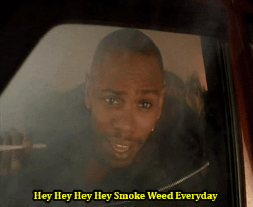 Smoke Weed Everyday, Weed, and Hey: Hey Hey Hey Hey Smoke Weed Everyday