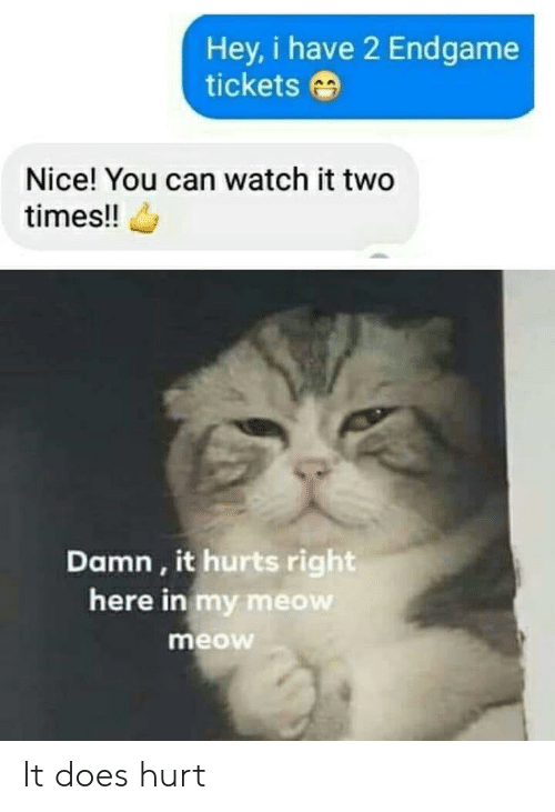 Watch, Nice, and Can: Hey, i have 2 Endgame  tickets  Nice! You can watch it two  times!!  Damn, it hurts right  here in my meow  meow It does hurt