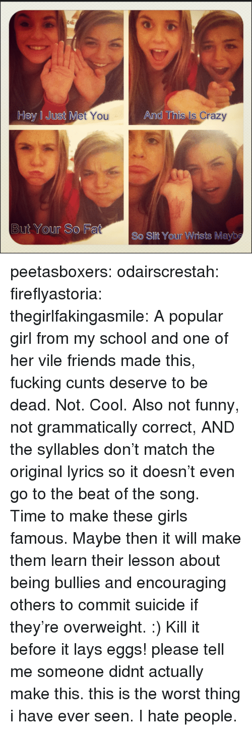 Crazy, Friends, and Fucking: Hey I Just M  You  And This  Is Crazy  But Your So F  So Slit Your Wrists Mayb peetasboxers:  odairscrestah:  fireflyastoria:  thegirlfakingasmile:  A popular girl from my school and one of her vile friends made this, fucking cunts deserve to be dead.   Not. Cool. Also not funny, not grammatically correct, AND thesyllables don't match the original lyrics so it doesn't even go to the beat of the song. Time to make these girls famous. Maybe then it will make them learn their lesson about being bullies and encouraging others to commit suicide if they're overweight. :)  Kill it before it lays eggs! please tell me someone didnt actually make this. this is the worst thing i have ever seen. I hate people.