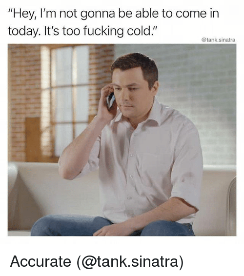 "Fucking, Memes, and Today: ""Hey, I'm not gonna be able to come in  today. It's too fucking cold.""  @tank.sinatra Accurate (@tank.sinatra)"