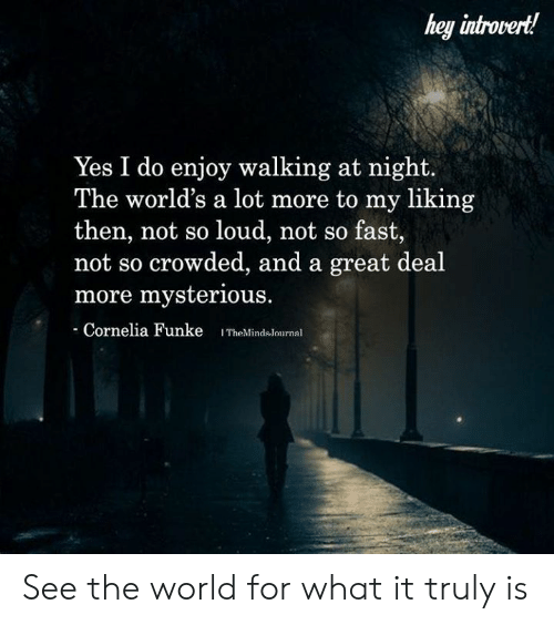 Introvert, Memes, and World: hey introvert!  Yes I do enjoy walking at night  The world's a lot more to my liking  then, not so loud, not so fast,  not so crowded, and a great deal  more mysterious.  Cornelia Funke ITheMindslournal See the world for what it truly is