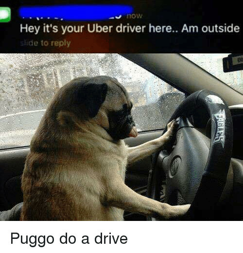 hey its your uber driver here am outside ade to 4321207 ✅ 25 best memes about uber uber memes