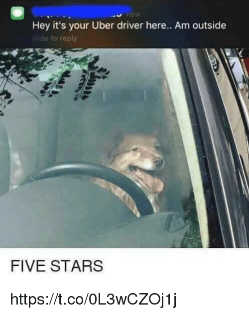Memes, Uber, and Stars: Hey it's your Uber driver here.. Am outside  ide to reply  FIVE STARS https://t.co/0L3wCZOj1j