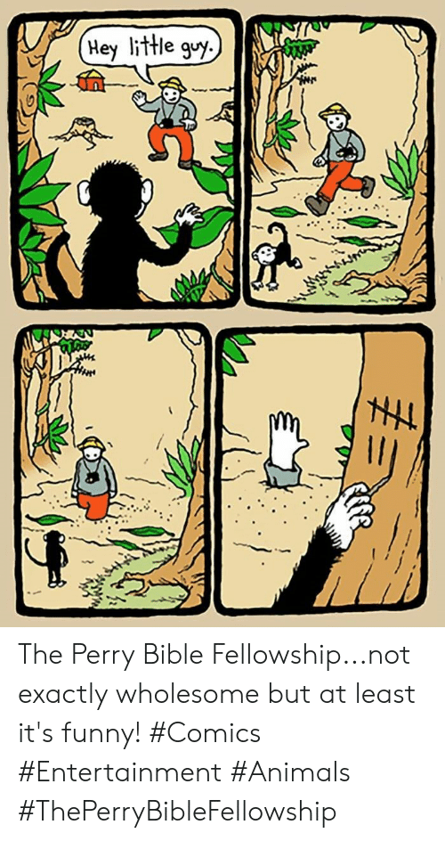 Animals, Funny, and Bible: Hey little guy. The Perry Bible Fellowship...not exactly wholesome but at least it's funny! #Comics #Entertainment #Animals #ThePerryBibleFellowship