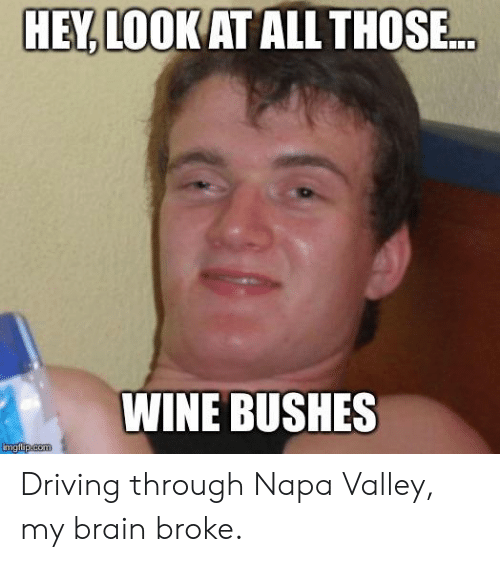 Driving, Reddit, and Wine: HEY, LOOK AT ALL THOSE.  WINE BUSHES  imgflip.com Driving through Napa Valley, my brain broke.