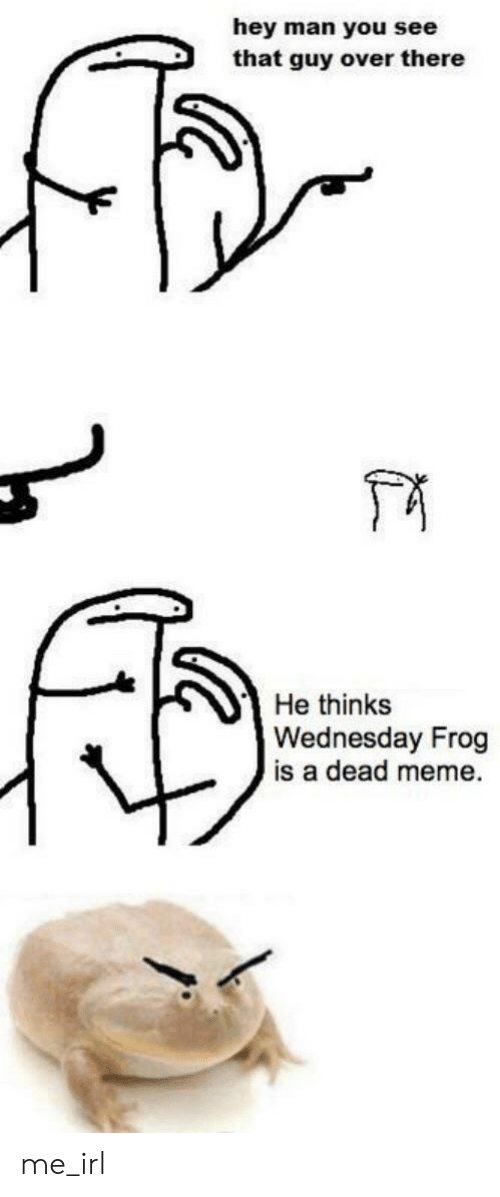 Meme, Wednesday, and Irl: hey man you see  that guy over there  He thinks  Wednesday Frog  is a dead meme me_irl