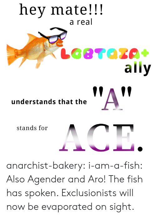 Target, Tumblr, and Ally: hey mate!!!  a real  ally  !AV  understands that the  stands for anarchist-bakery: i-am-a-fish:  Also Agender and Aro!  The fish has spoken. Exclusionists will now be evaporated on sight.