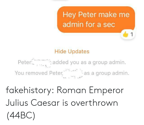 Target, Tumblr, and Blog: Hey Peter make me  admin for a sec  1  Hide Updates  Peter  added you as a group admin.  You removed Peter.  as a group admin fakehistory: Roman Emperor Julius Caesar is overthrown (44BC)