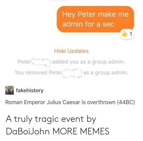 Dank, Memes, and Target: Hey Peter make me  admin for a sec  Hide Updates  Pete  You removed Peteras a group admin.  added you as a group admin.  fakehistory  Roman Emperor Julius Caesar is overthrown (44BC) A truly tragic event by DaBoiJohn MORE MEMES