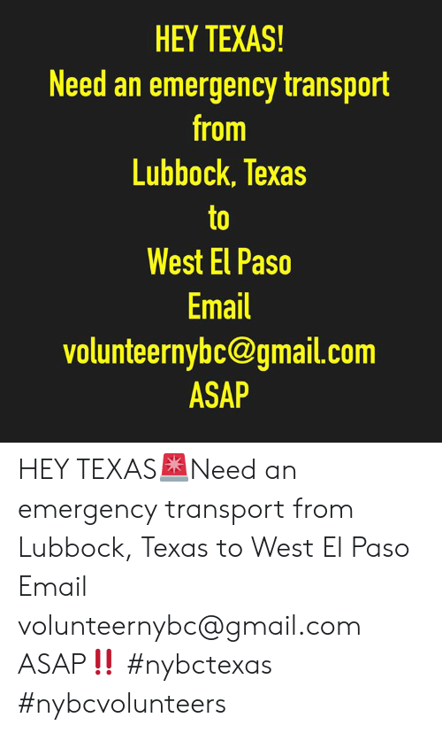 Memes, Email, and Gmail: HEY TEXAS!  Need an emergency transport  from  Lubbock, Texas  to  West El Paso  Email  volunteernybc@gmail.com  ASAP HEY TEXAS🚨Need an emergency transport from Lubbock, Texas to West El Paso Email volunteernybc@gmail.com ASAP‼️ #nybctexas #nybcvolunteers