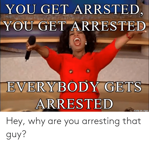 Why, You, and That Guy: Hey, why are you arresting that guy?