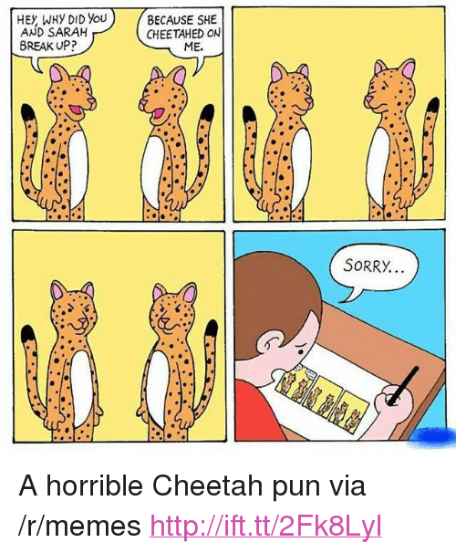 """Memes, Cheetah, and Http: HEY WHy DID You  AND SARAH  BECAUSE SHE  CHEETAHED ON  8REAK UP?  ME.  S0RRY. <p>A horrible Cheetah pun via /r/memes <a href=""""http://ift.tt/2Fk8Lyl"""">http://ift.tt/2Fk8Lyl</a></p>"""