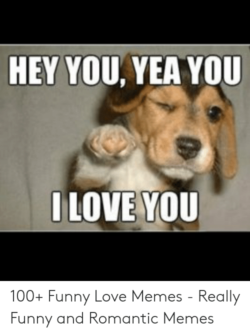Funny, Love, and Memes: HEY YOU, YEA YOU  ILOVE YOU 100+ Funny Love Memes - Really Funny and Romantic Memes