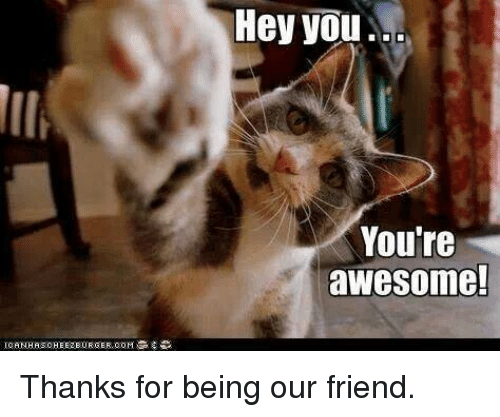 hey you you re awesome thanks for being our friend meme on me me
