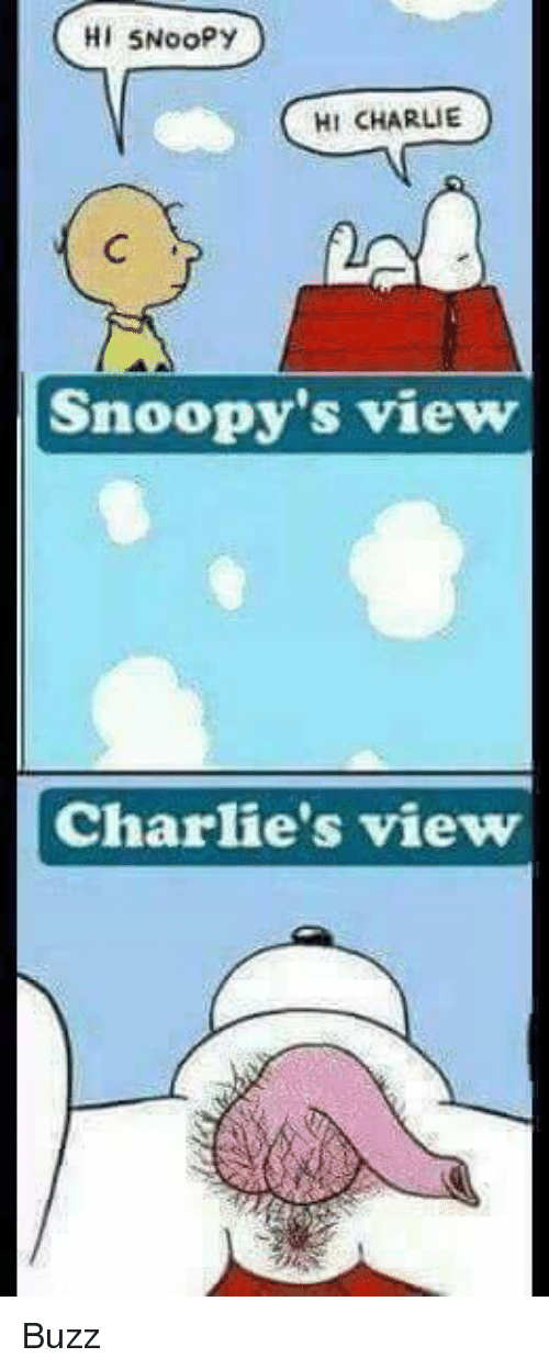 Charlie, Memes, and Snoopy: HI 5Noopy  HI CHARLIE  Snoopy's view  Charlie's view Buzz