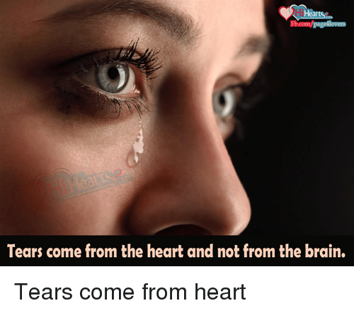 Hi Hearts Tears Come From The Heart And Not From The Brain Tears