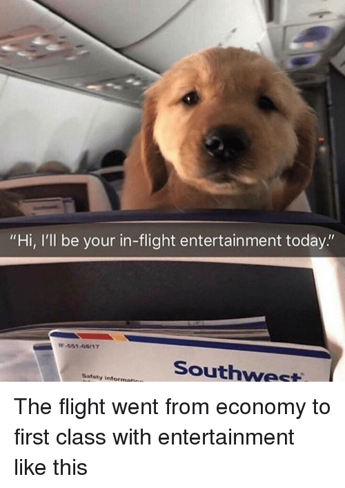 "Flight, Southwest, and Today: ""Hi, I'll be your in-flight entertainment today.""  -551-08/17  Southwest  Safety informati The flight went from economy to first class with entertainment like this"