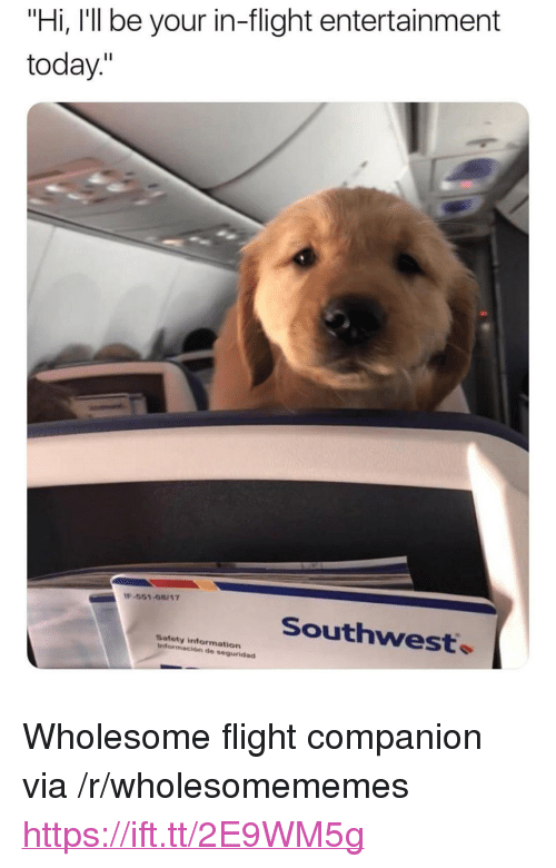 "Flight, Information, and Southwest: ""Hi, I'll be your in-flight entertainment  today.""  -551-08117  Southwest.  Safety information  información de seguridad <p>Wholesome flight companion via /r/wholesomememes <a href=""https://ift.tt/2E9WM5g"">https://ift.tt/2E9WM5g</a></p>"