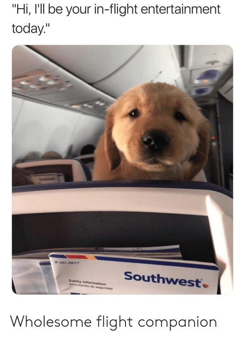 "Flight, Information, and Southwest: ""Hi, I'll be your in-flight entertainment  today.""  -551-08117  Southwest.  Safety information  información de seguridad Wholesome flight companion"