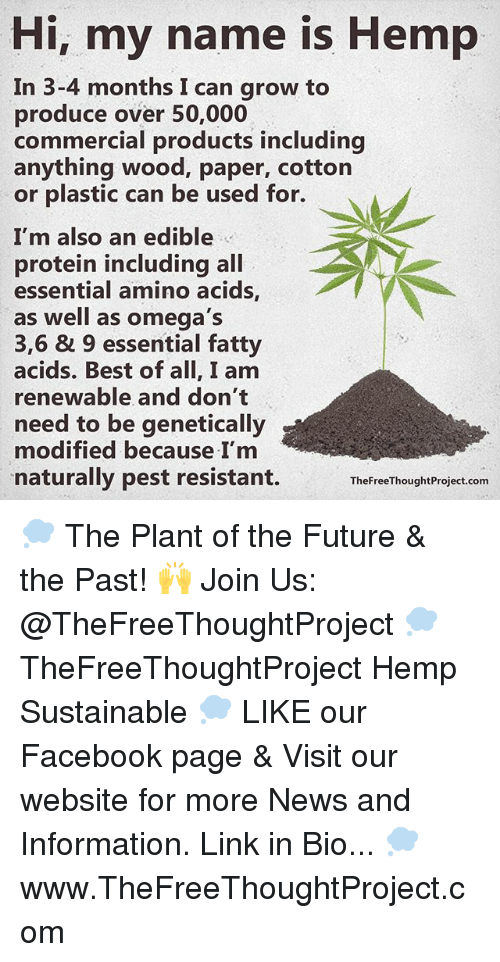 Facebook, Future, and Memes: Hi, my name is Hemp  In 3-4 months I can grow to  produce over 50,000  commercial products including  anything wood, paper, cotton  or plastic can be used for.  I'm also an edible  protein including all  essential amino acids  as well as omega's  3,6 & 9 essential fatty  acids. Best of all, I am  renewable and don't  need to be genetically  modified because I'm  naturally pest resistant.  The FreeThoughtProject.com 💭 The Plant of the Future & the Past! 🙌 Join Us: @TheFreeThoughtProject 💭 TheFreeThoughtProject Hemp Sustainable 💭 LIKE our Facebook page & Visit our website for more News and Information. Link in Bio... 💭 www.TheFreeThoughtProject.com