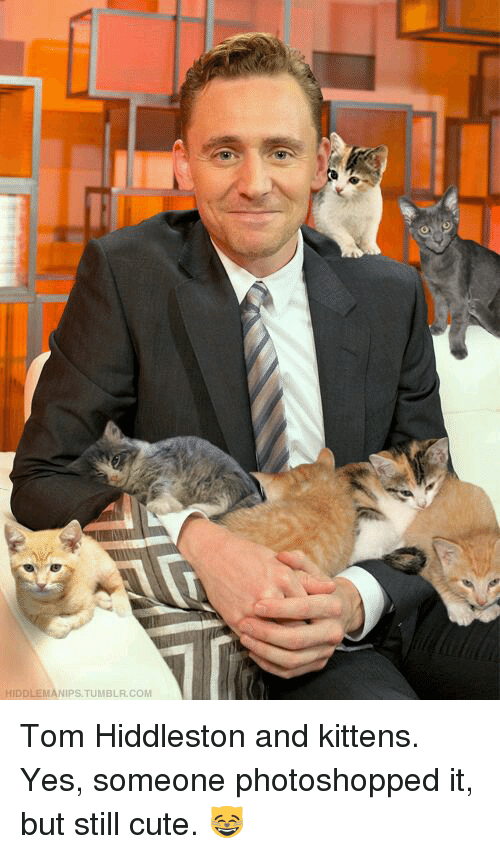 Memes, Photoshop, and Kittens: HIDDLEMANIPSTUMBLA COM Tom Hiddleston and kittens. Yes, someone photoshopped it, but still cute. 😸