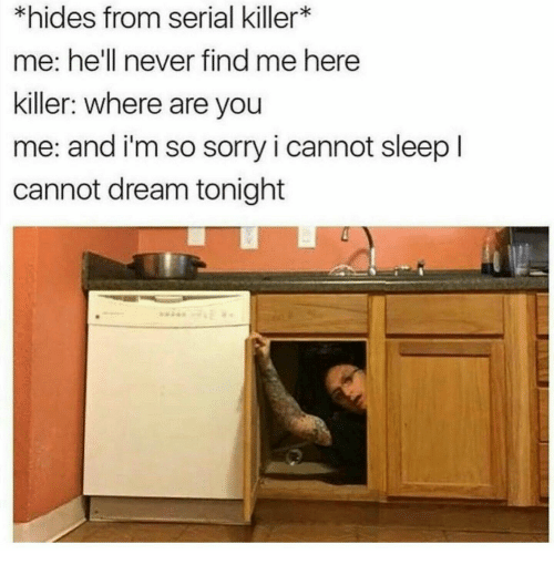 Sorry, Serial, and Hell: *hides from serial killer*  me: he'll never find me here  killer: where are you  me: and i'm so sorry i cannot sleep l  cannot dream tonight