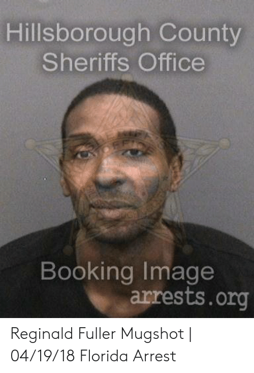 Hillsborough County Sheriffs Office Booking Image Arrestsorg
