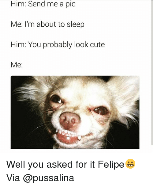 Cute, Funny, and Sleep: Him: Send me a pic  Me: I'm about to sleep  Him: You probably look cute  Me: Well you asked for it Felipe😬 Via @pussalina