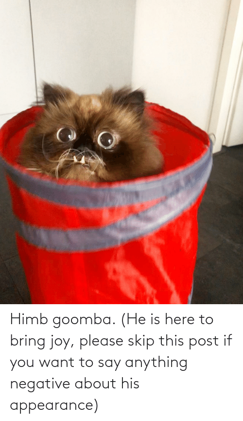 Say Anything..., Joy, and You: Himb goomba. (He is here to bring joy, please skip this post if you want to say anything negative about his appearance)