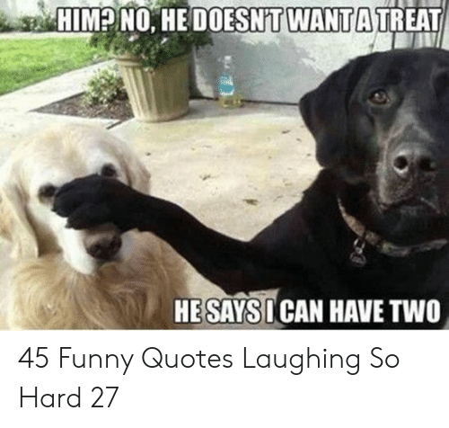 Funny, Quotes, and Can: HIMPNO, HEDOESNIT WANTATREAT  HE SAYS I CAN HAVE TWO 45 Funny Quotes Laughing So Hard 27