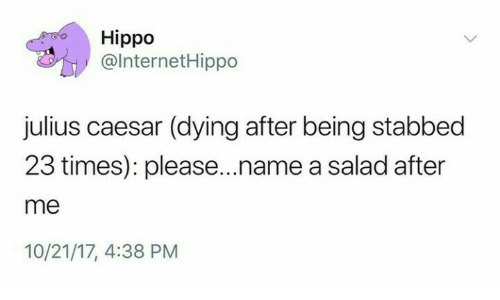 Julius Caesar, Hippo, and Caesar: Hippo  @lnternetHippo  julius caesar (dying after being stabbed  23 times): please...name a salad after  me  10/21/17, 4:38 PM