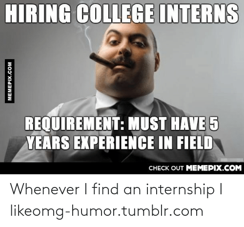 College, Omg, and Tumblr: HIRING COLLEGE INTERNS  REQUIREMENT: MUST HAVE 5  YEARS EXPERIENCE IN FIELD  CHECK OUT MEMEPIX.COM  MEMEPIX.COM Whenever I find an internship I likeomg-humor.tumblr.com