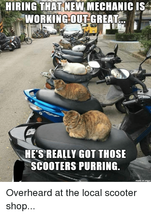 Hiring That New Mechanic Isa Hes Really Got Those Scooters Purring